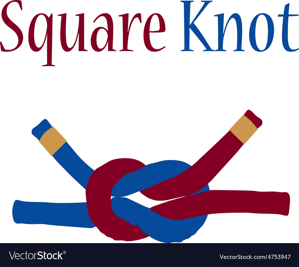 Square knot vector | Price: 1 Credit (USD $1)