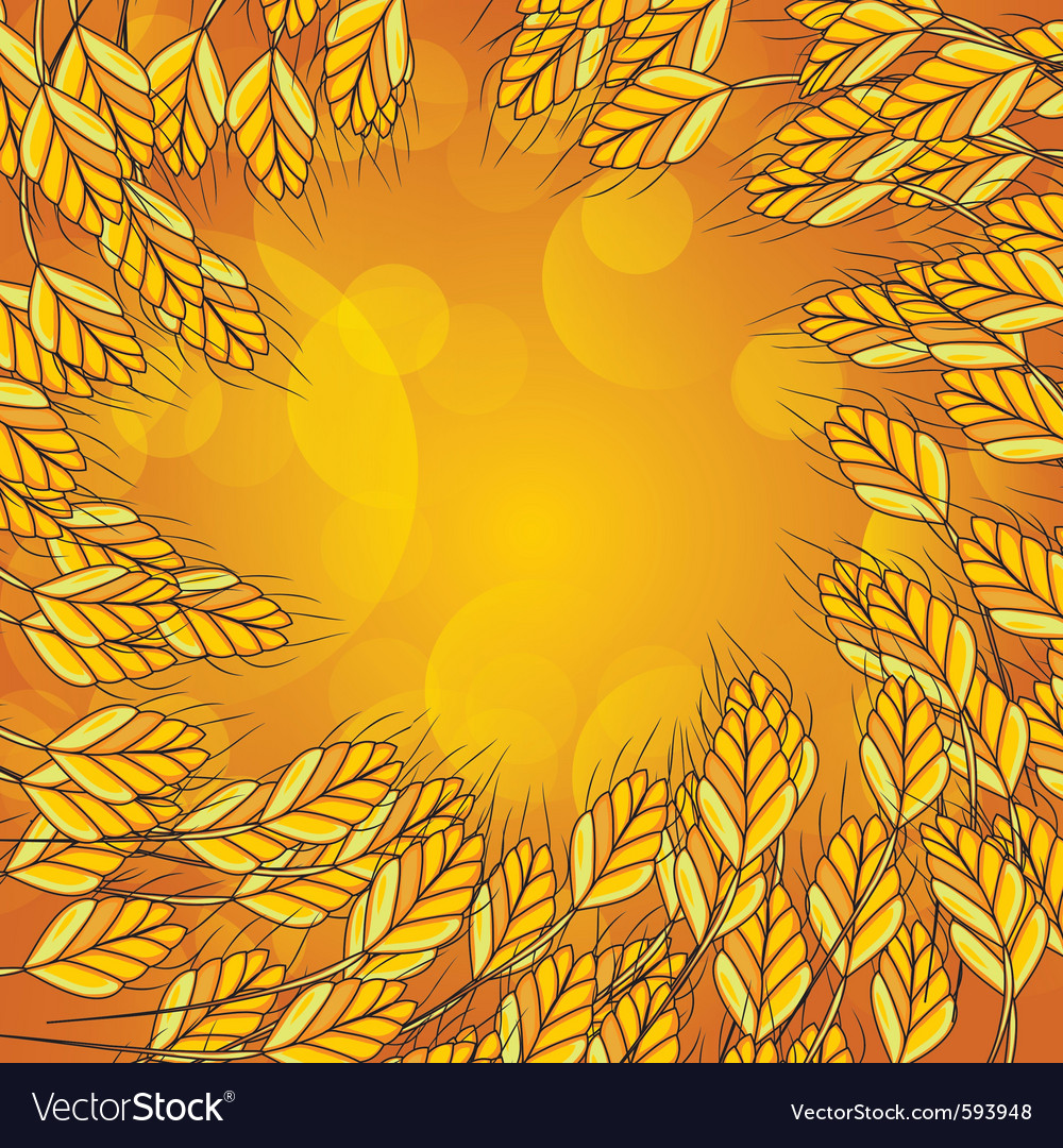 Wheat background vector | Price: 1 Credit (USD $1)