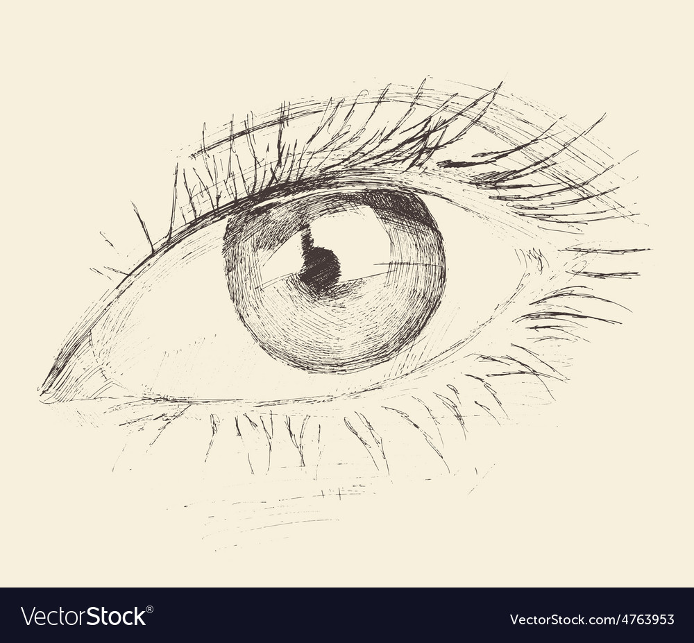 Eye sketch hand drawn engraved vector | Price: 1 Credit (USD $1)