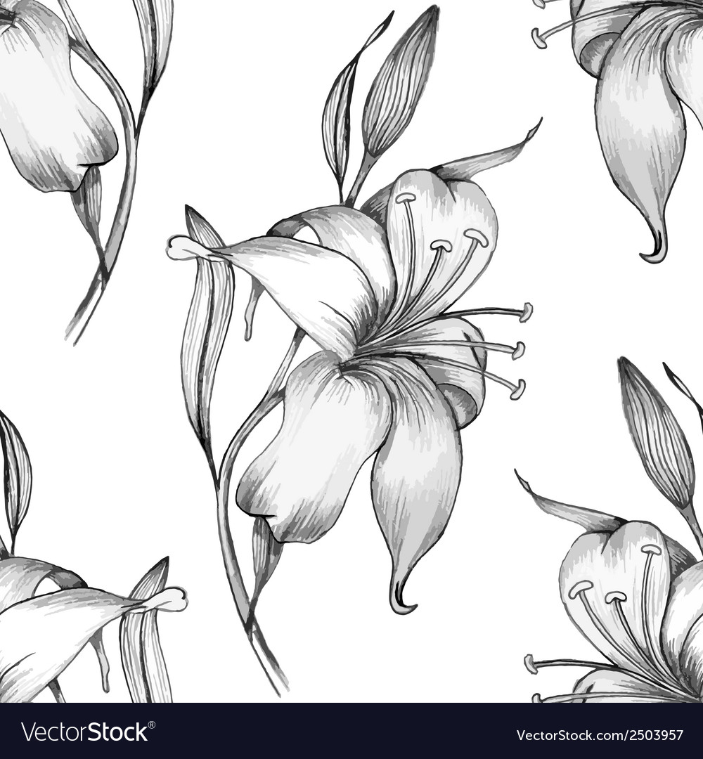 Lily seamless pattern vector | Price: 1 Credit (USD $1)