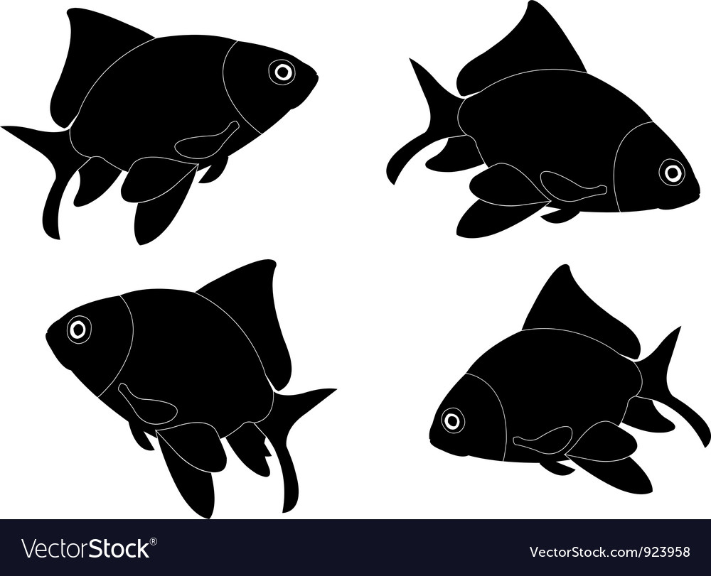 Goldfish - vector | Price: 1 Credit (USD $1)