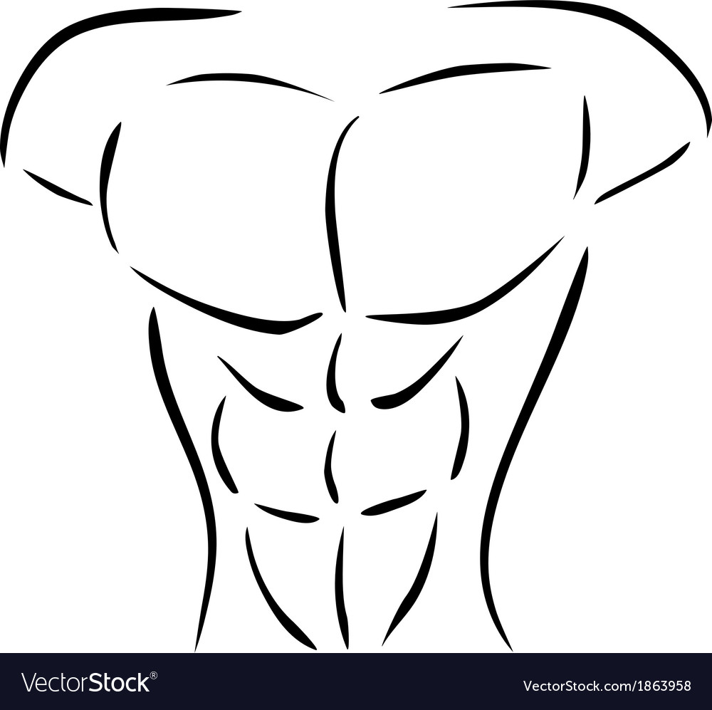 Muscular body vector | Price: 1 Credit (USD $1)