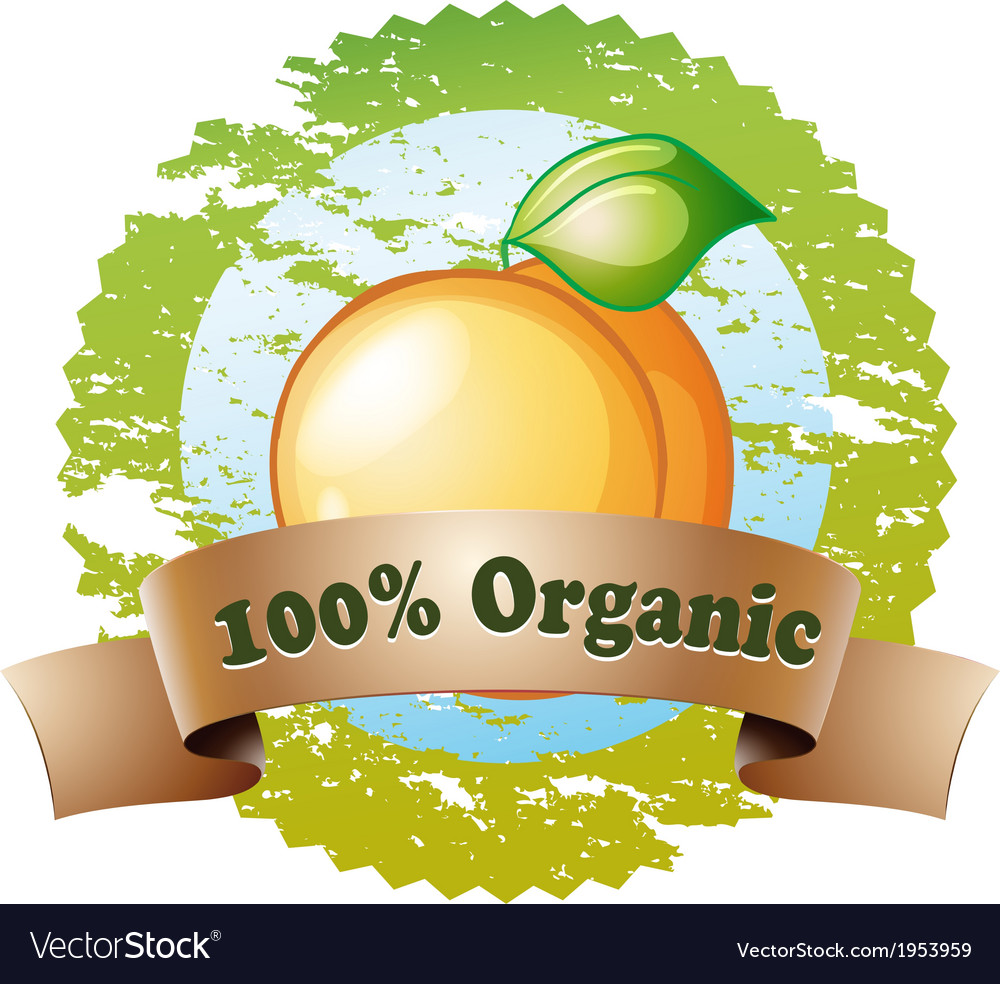 An organic label with a ripe orange vector | Price: 1 Credit (USD $1)
