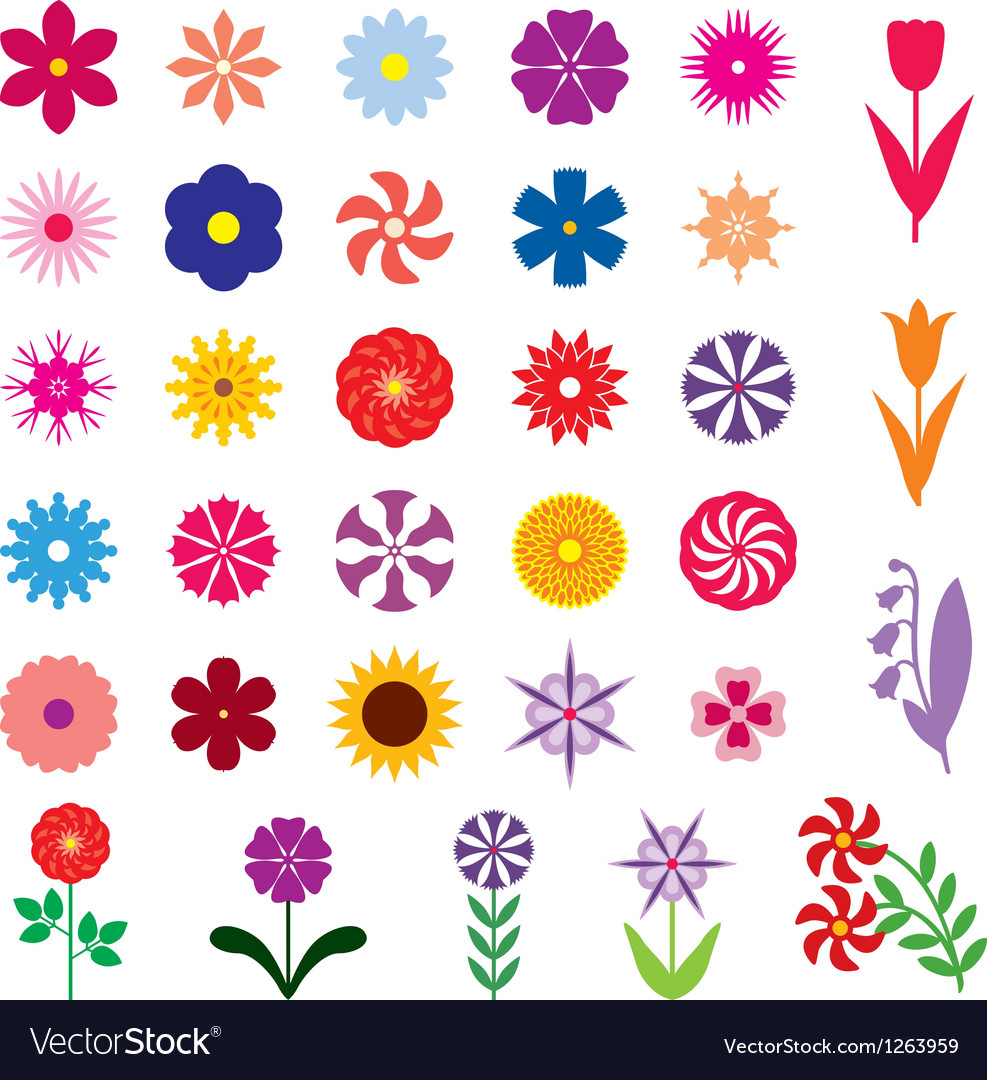 Flower color vector | Price: 1 Credit (USD $1)