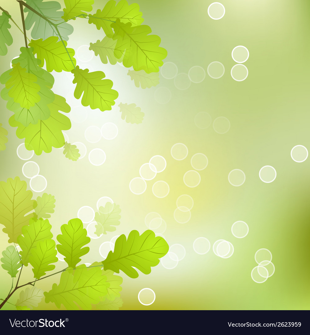 Oakleaves vector | Price: 1 Credit (USD $1)