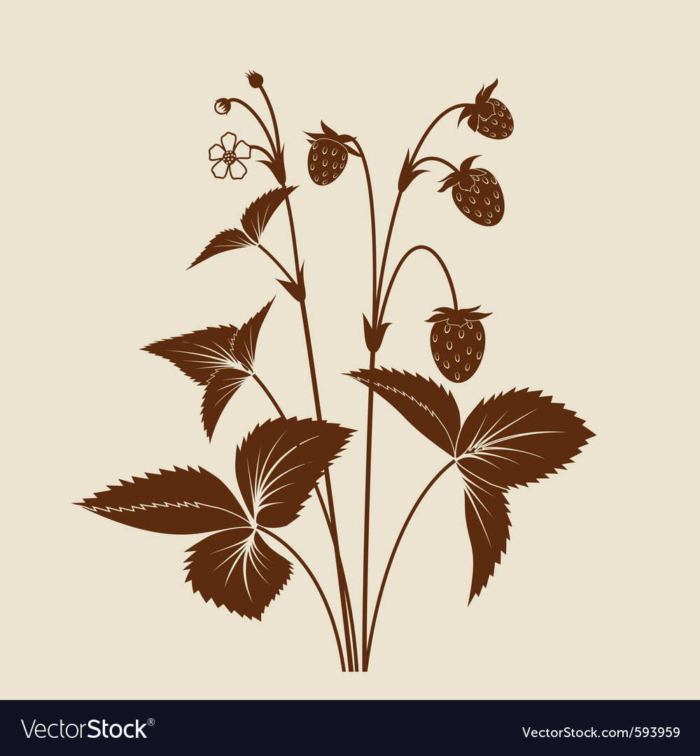 Strawberry shrub silhouette vector | Price: 1 Credit (USD $1)