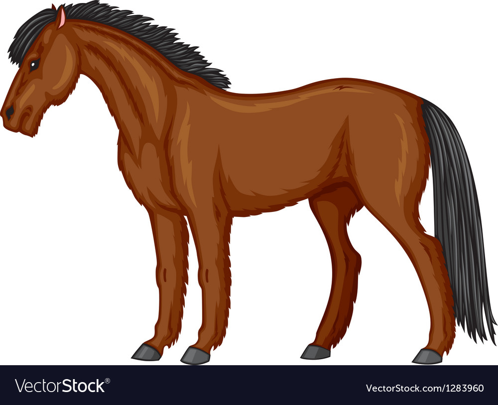 Pony vector | Price: 1 Credit (USD $1)