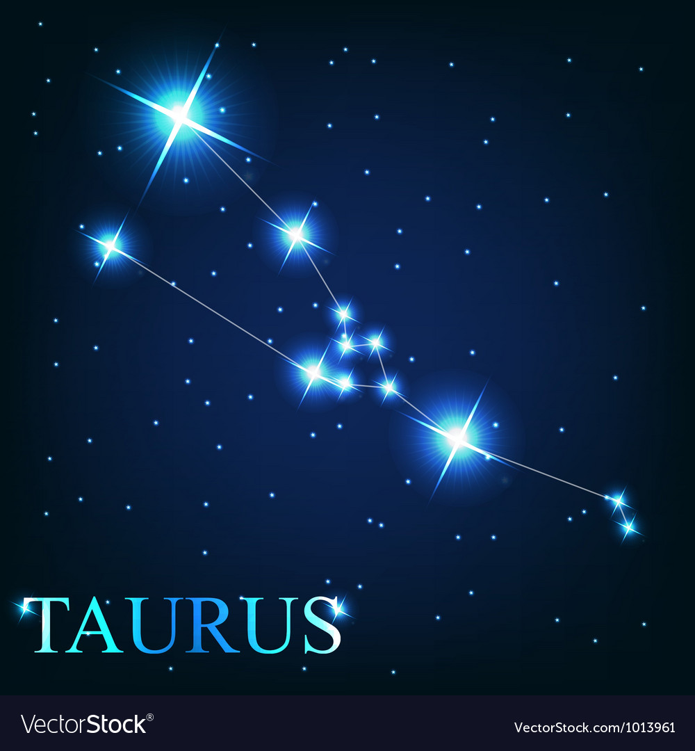 The taurus zodiac sign of the beautiful bright vector | Price: 1 Credit (USD $1)