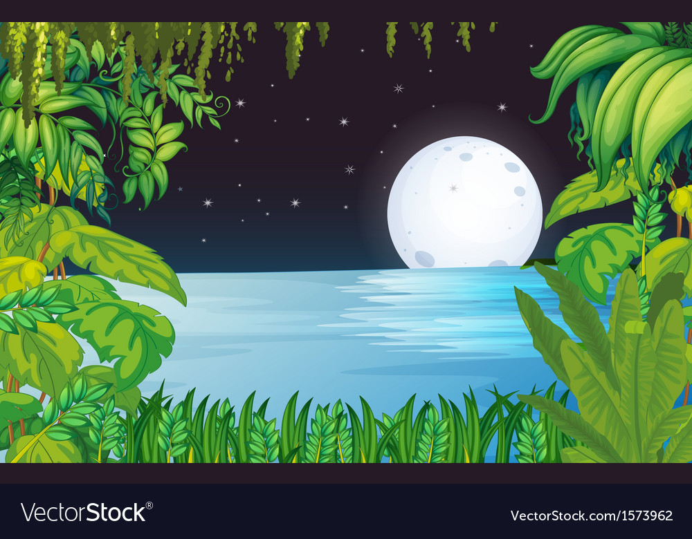 A lake in the forest under the bright fullmoon vector | Price: 3 Credit (USD $3)