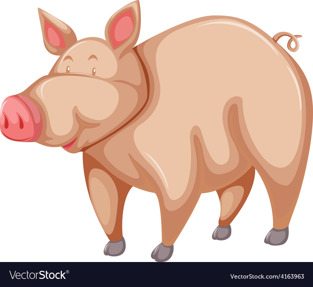 Pink pig vector | Price: 1 Credit (USD $1)