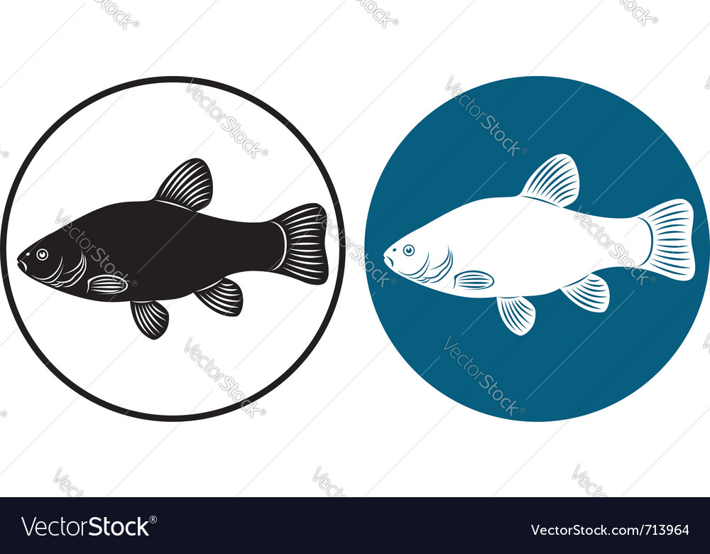 Fish line vector | Price: 1 Credit (USD $1)
