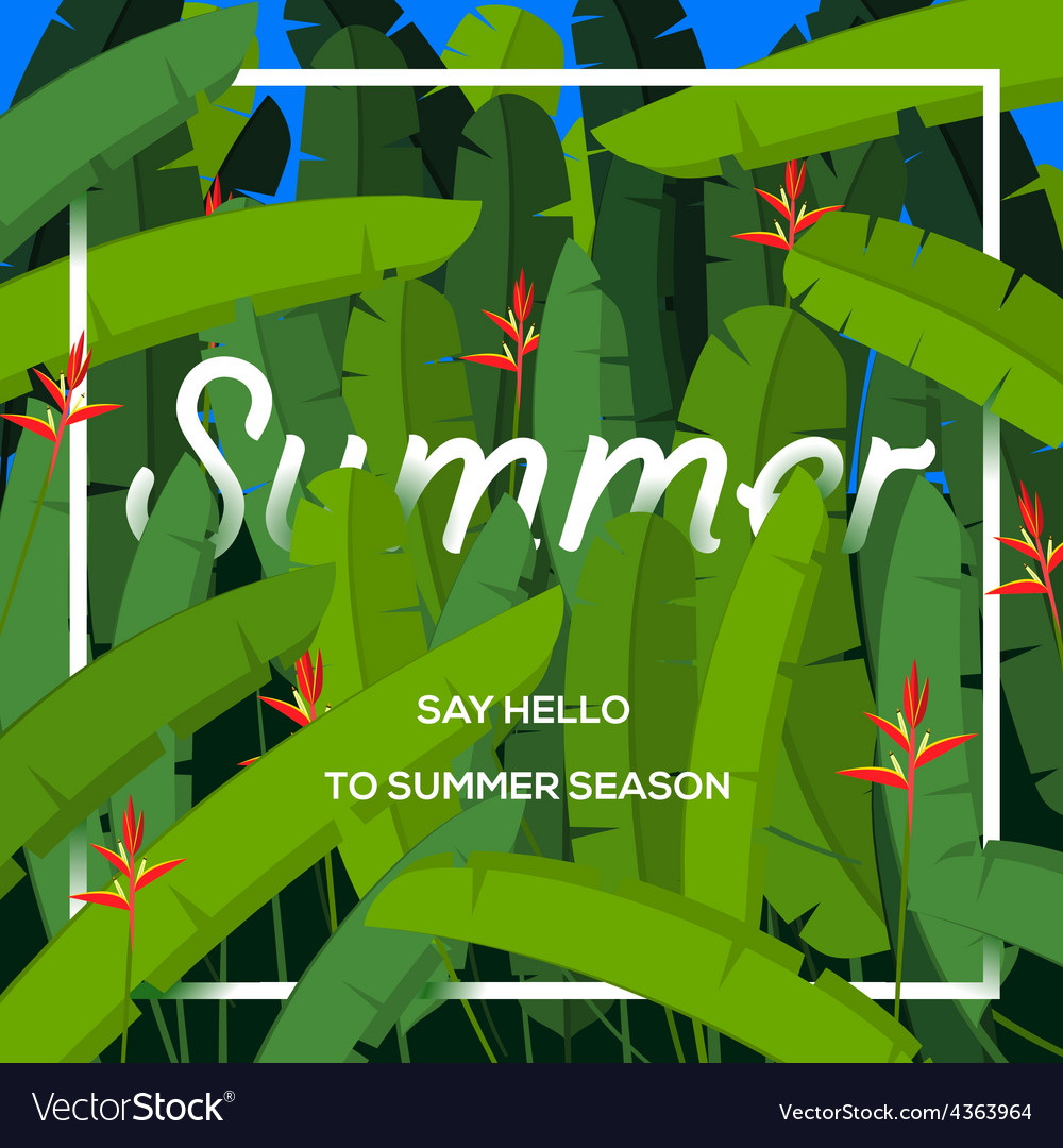 Summer season concept tropical paradise with palm vector | Price: 1 Credit (USD $1)