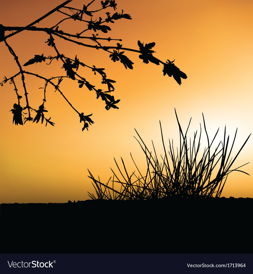 Sunset and shrub silhouette vector | Price: 1 Credit (USD $1)
