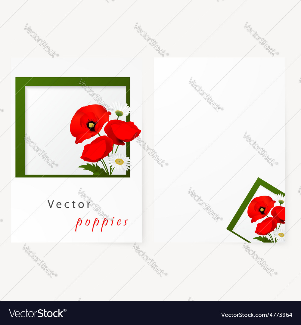 Template card with chamomile and red flowers vector | Price: 1 Credit (USD $1)
