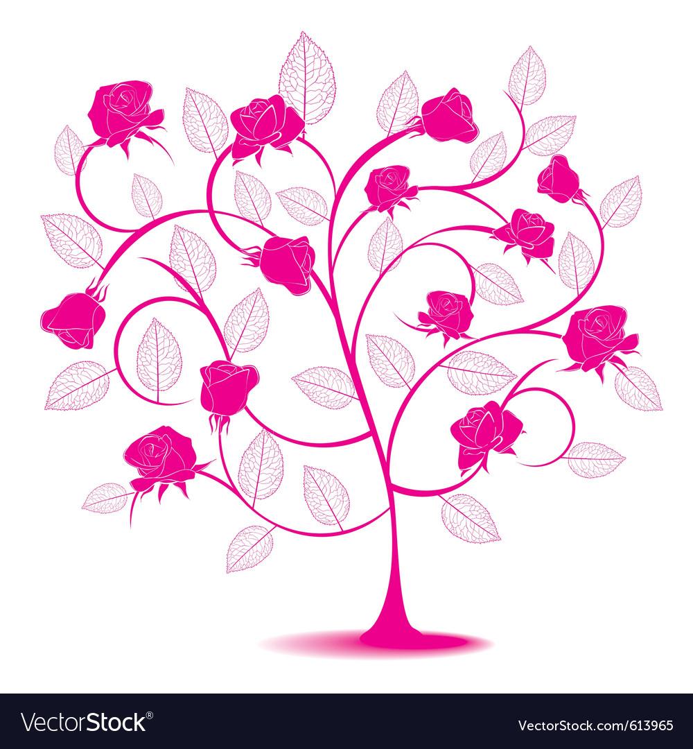 Rose flowering tree vector