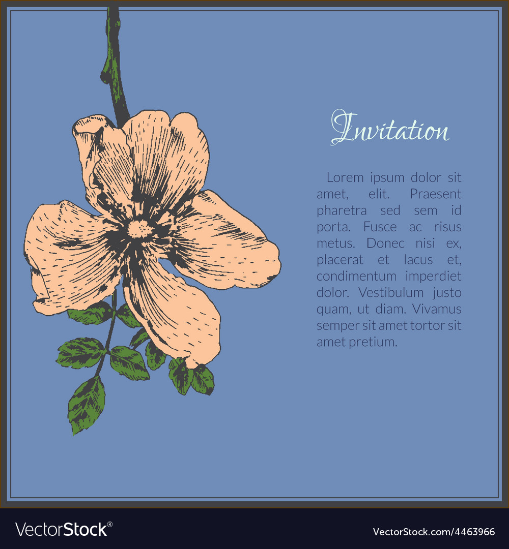 Invitation card template with dog-rose flower vector | Price: 1 Credit (USD $1)
