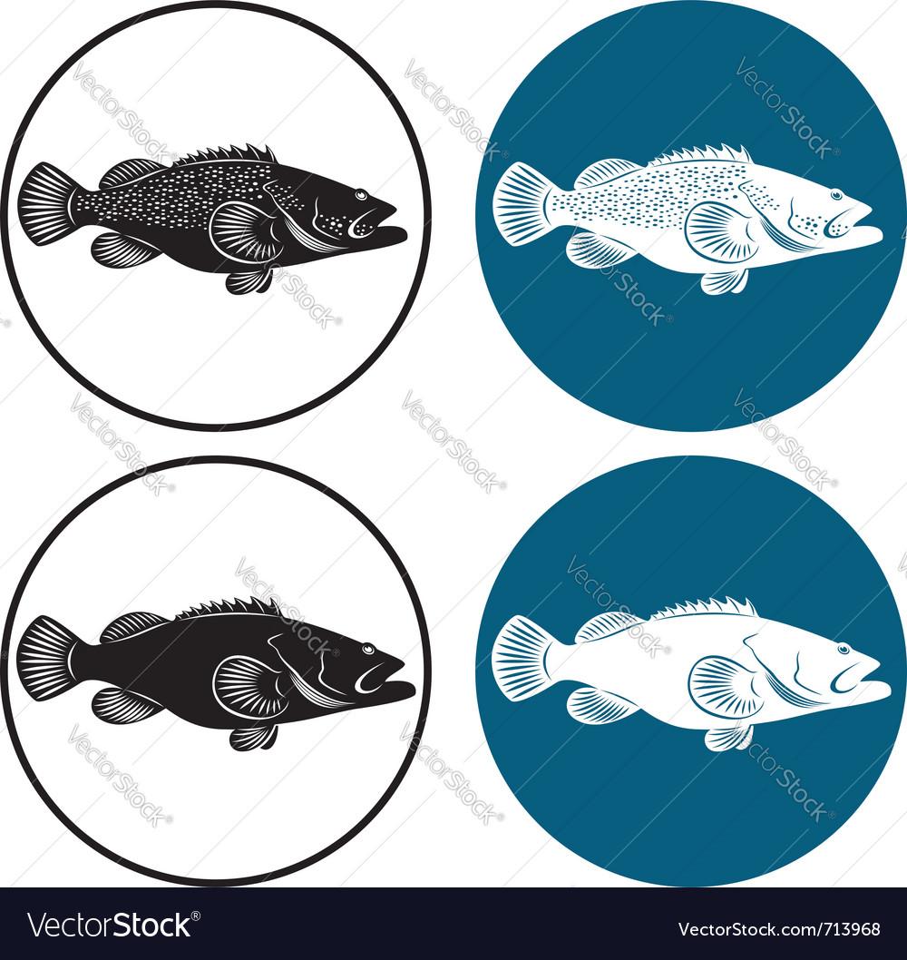 Grouper fish vector | Price: 1 Credit (USD $1)