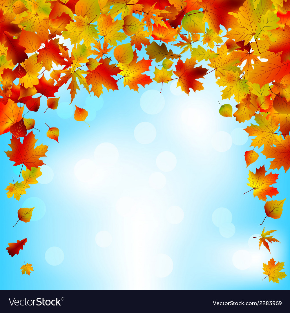 Autumnal sky bright design eps 8 vector | Price: 1 Credit (USD $1)