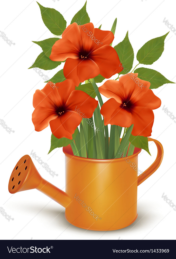Fresh summer flowers growing in a watering can vector | Price: 1 Credit (USD $1)