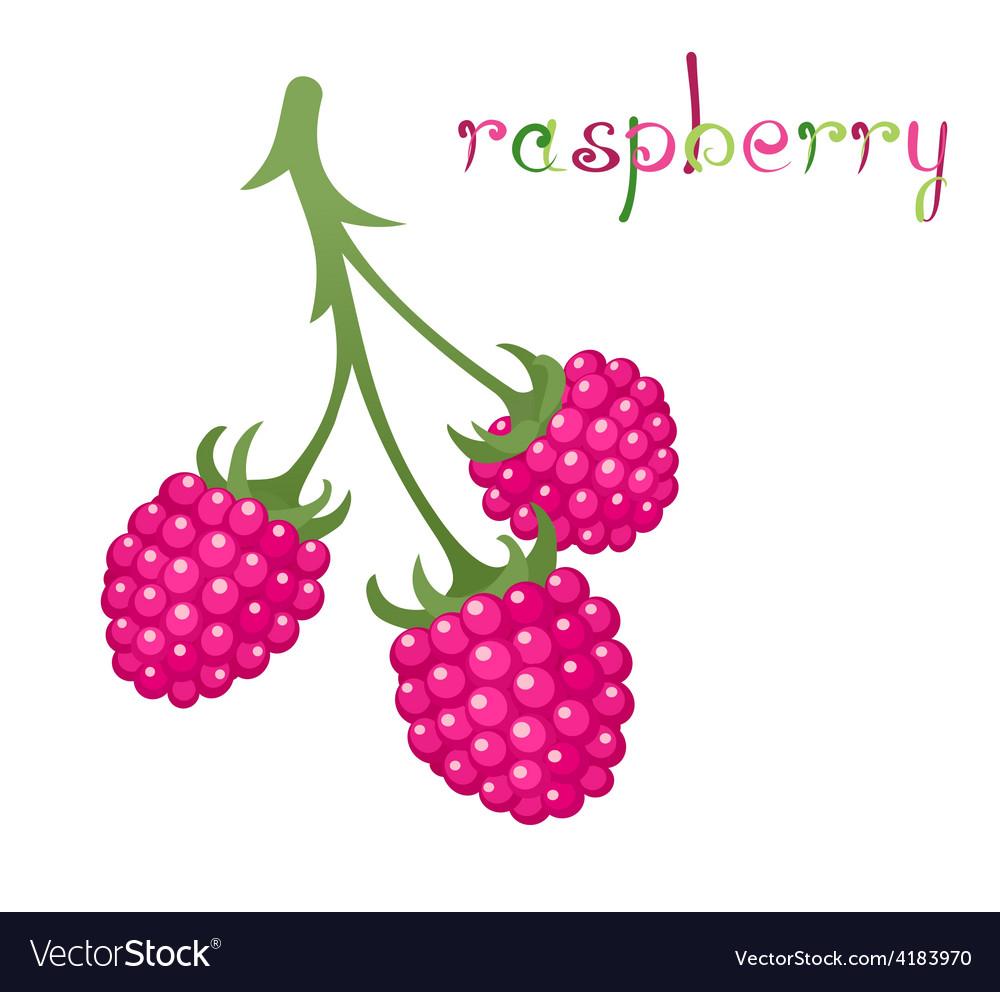 Raspberry branch vector | Price: 1 Credit (USD $1)