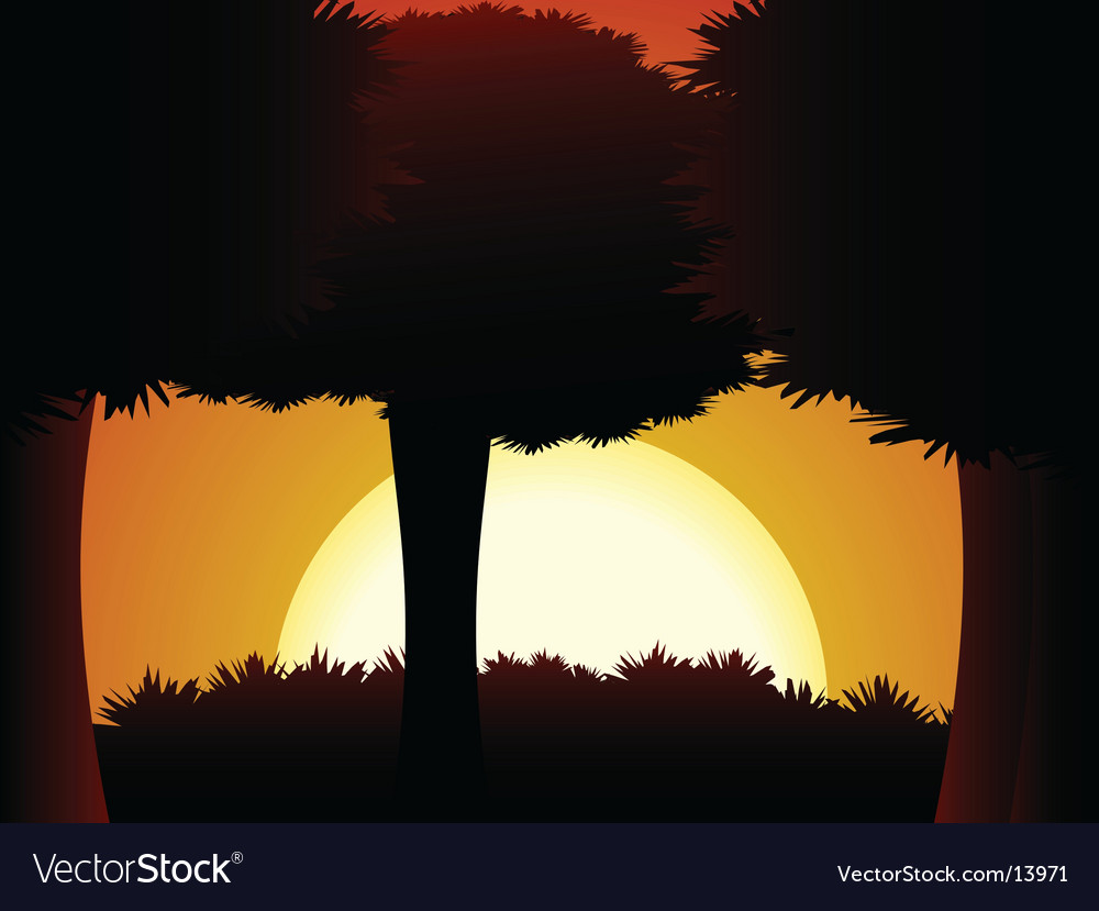 Forest sunset vector | Price: 1 Credit (USD $1)