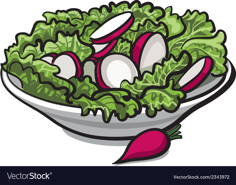 Radish salad vector | Price: 1 Credit (USD $1)