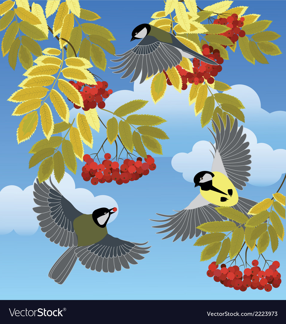 Birds among the branches vector | Price: 1 Credit (USD $1)