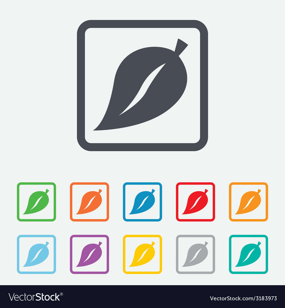Leaf sign icon fresh product symbol vector | Price: 1 Credit (USD $1)