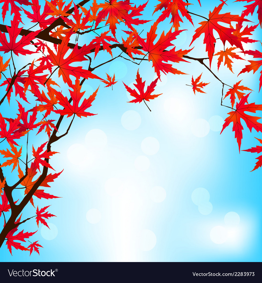 Red japanese maple leaves against blue sky eps 8 vector | Price: 1 Credit (USD $1)