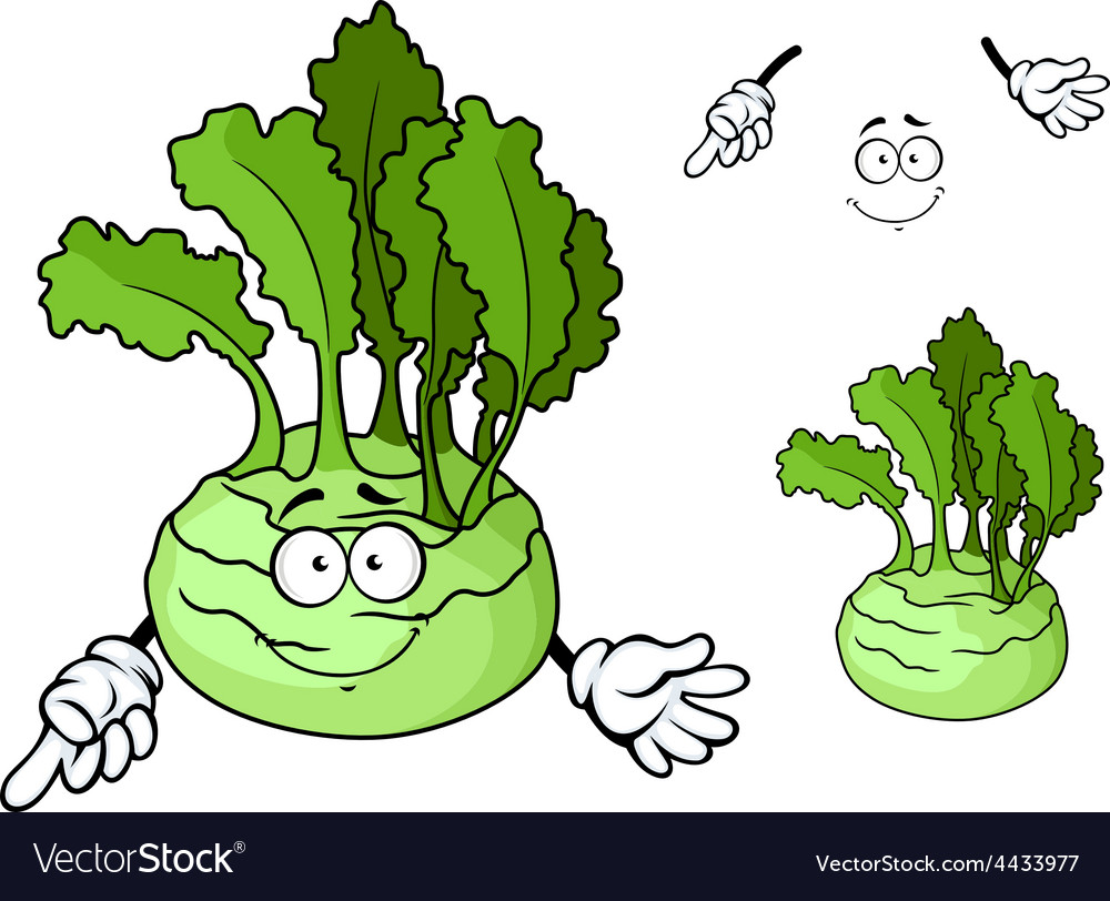 Cartoon smiling ripe kohlrabi vegetable cartoon vector | Price: 1 Credit (USD $1)