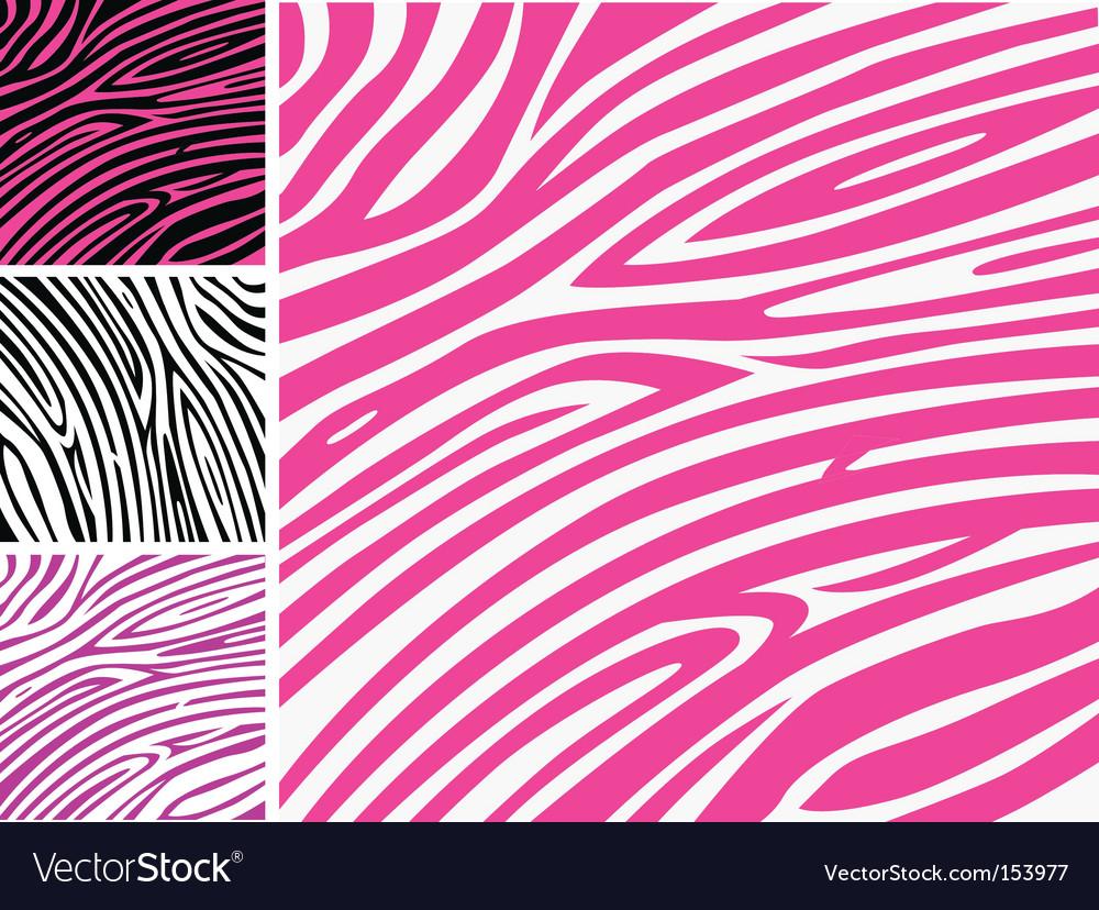 Zebra print background vector