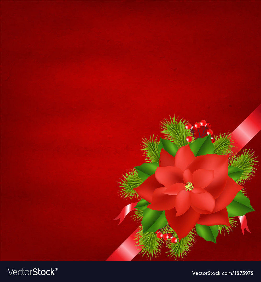 Winter flower with red background vector | Price: 1 Credit (USD $1)