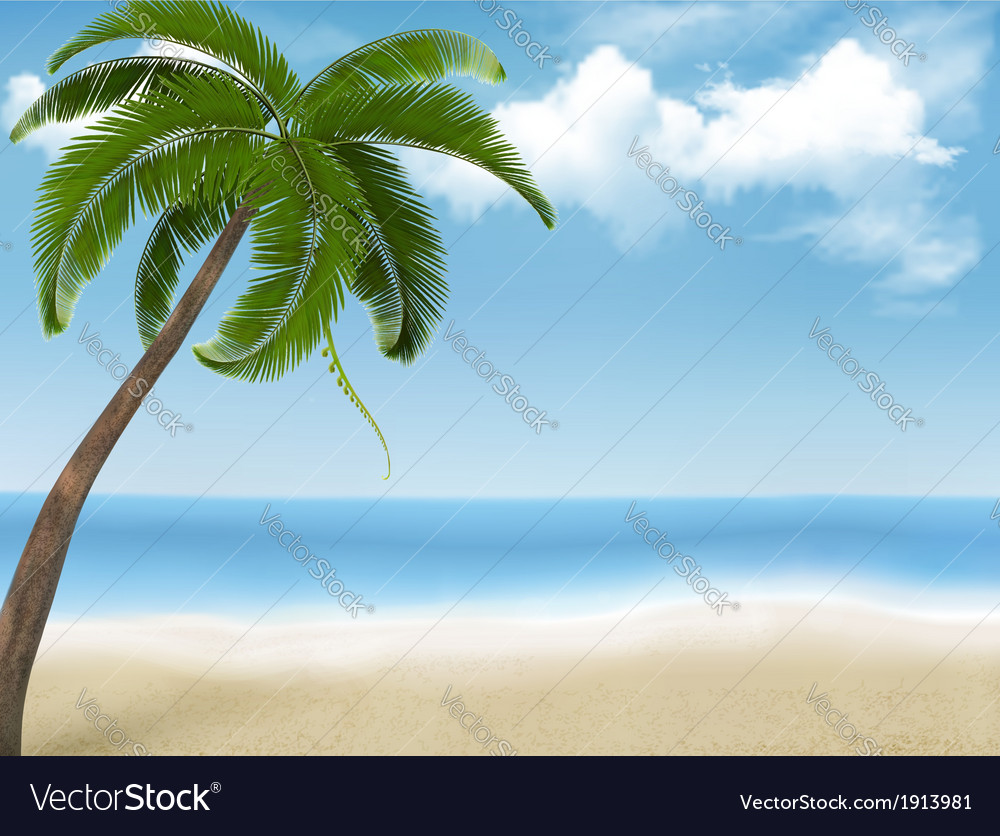 Palm tree holiday background vector | Price: 1 Credit (USD $1)