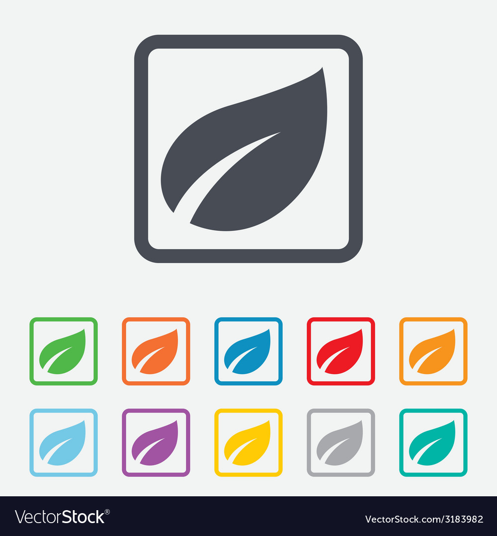 Leaf sign icon fresh product symbol vector   Price: 1 Credit (USD $1)