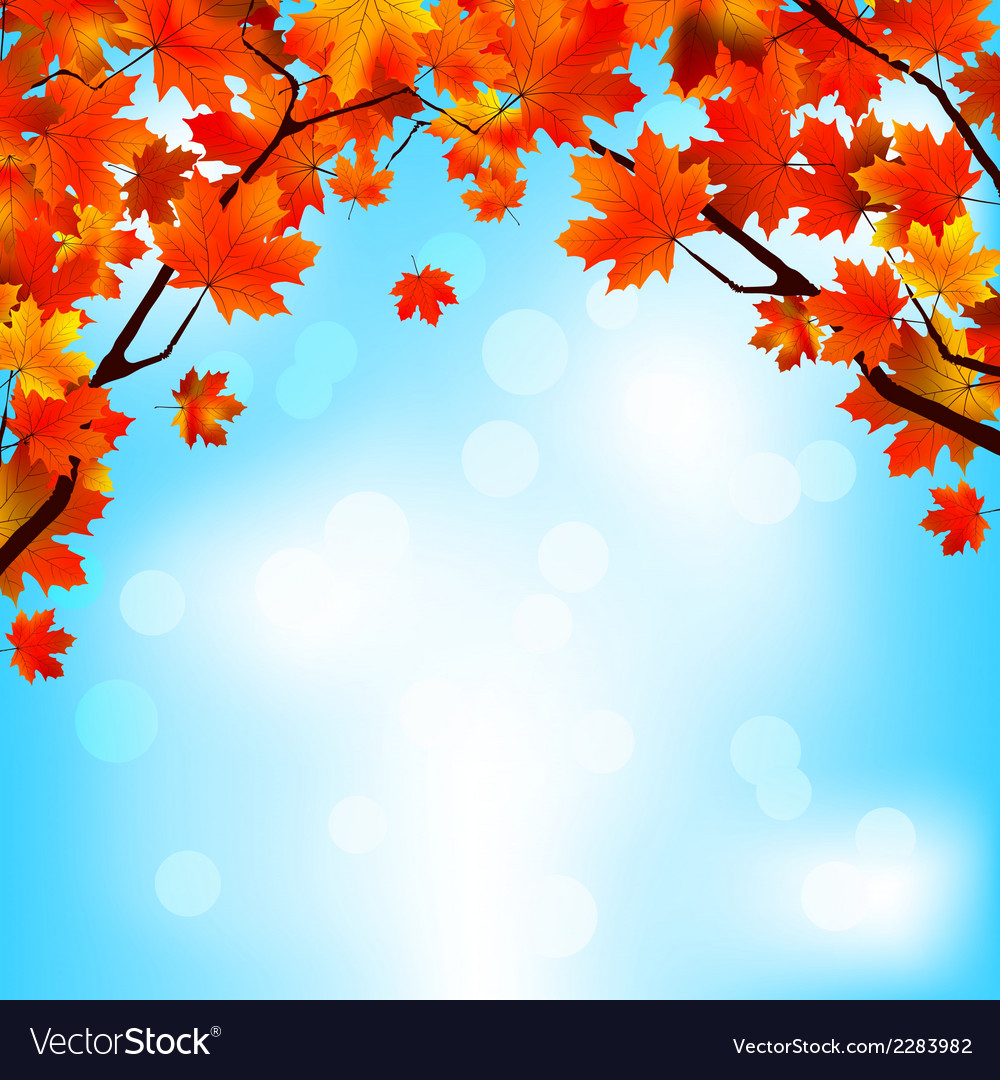 Red and yellow leaves against bright sky eps 8 vector | Price: 1 Credit (USD $1)