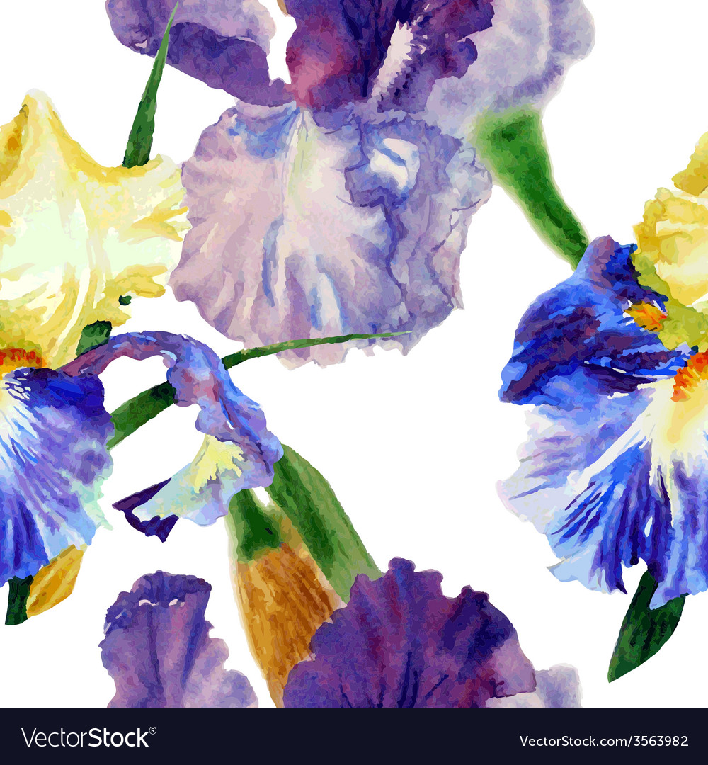 Seamless pattern with color irises1-05 vector | Price: 1 Credit (USD $1)