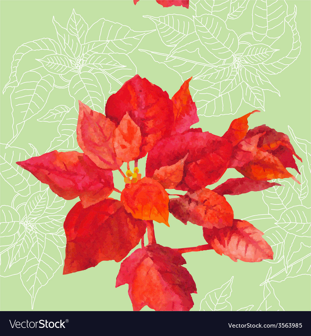 Seamless pattern with poinsettia plant-05 vector | Price: 1 Credit (USD $1)