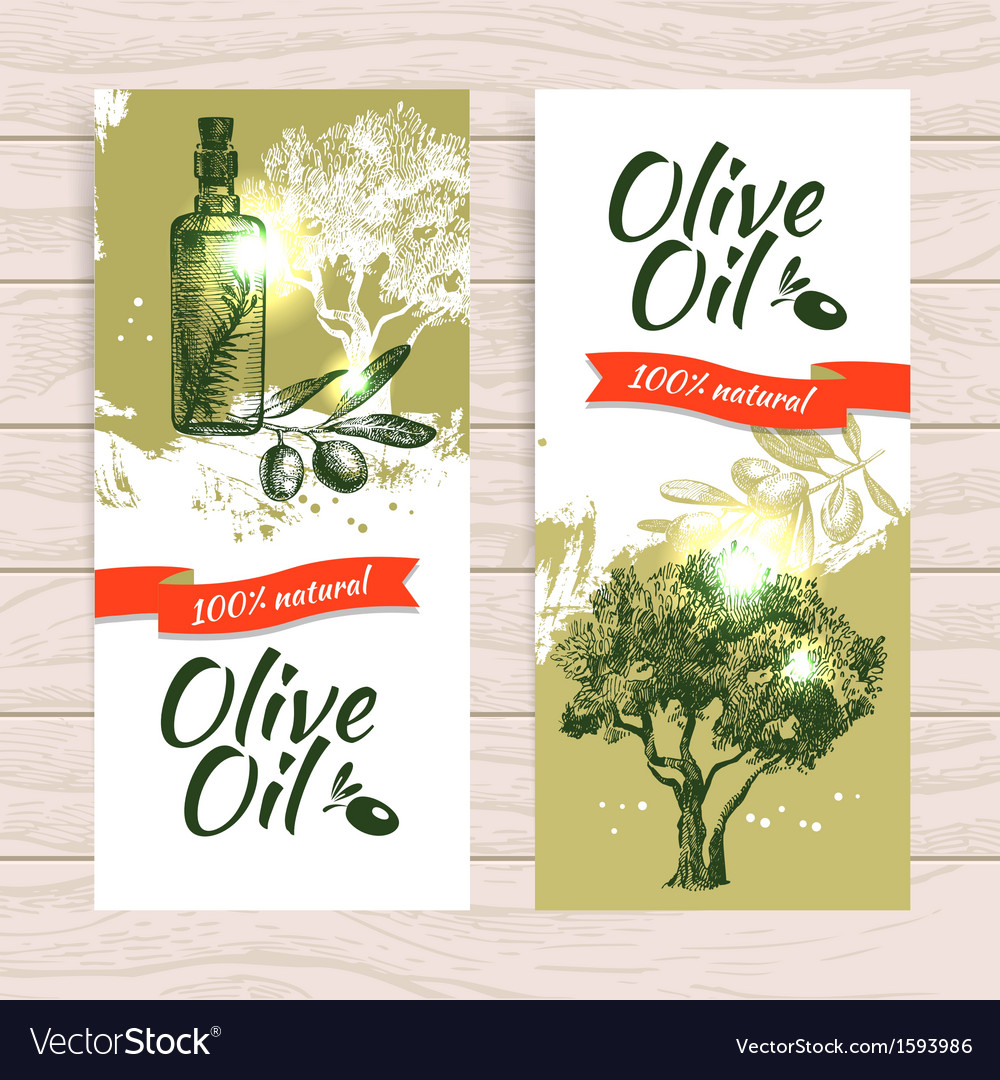 Banner set of vintage olive splash backgrounds vector | Price: 1 Credit (USD $1)