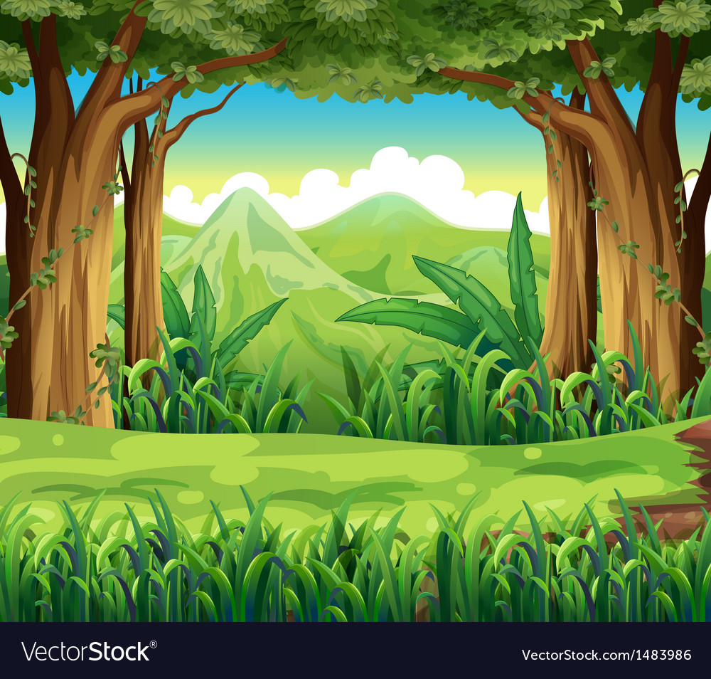 The green forest vector