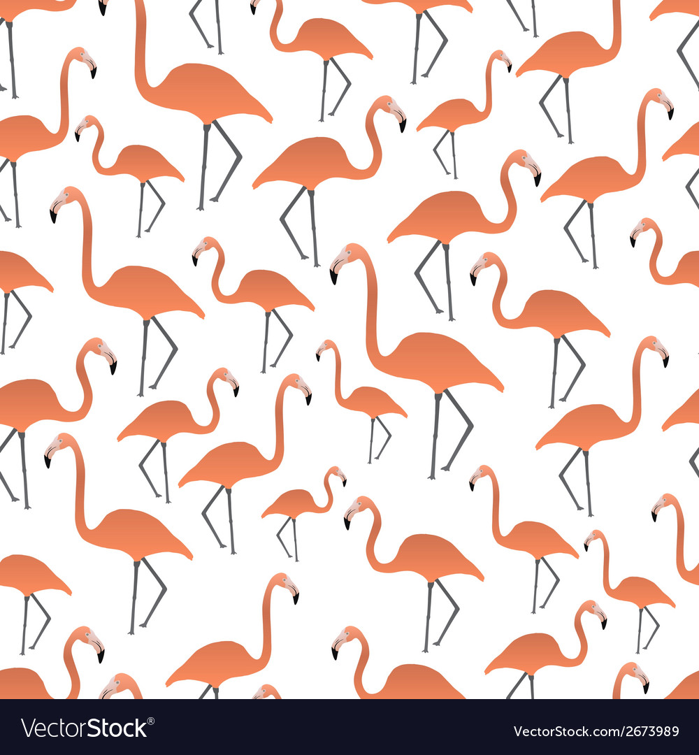 Flamingos seamless pattern eps10 vector   Price: 1 Credit (USD $1)