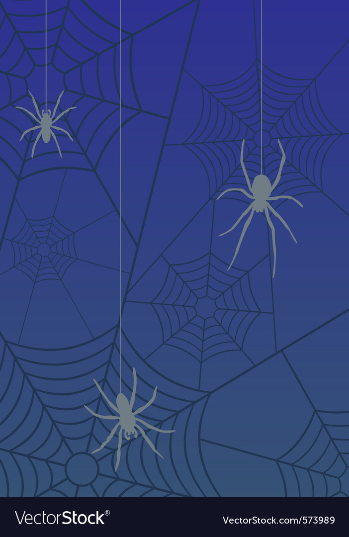 Spiders and web vector   Price: 1 Credit (USD $1)