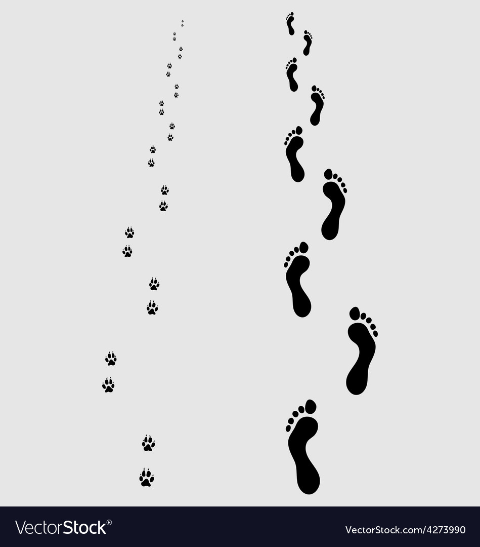 Footprints 4 vector | Price: 1 Credit (USD $1)