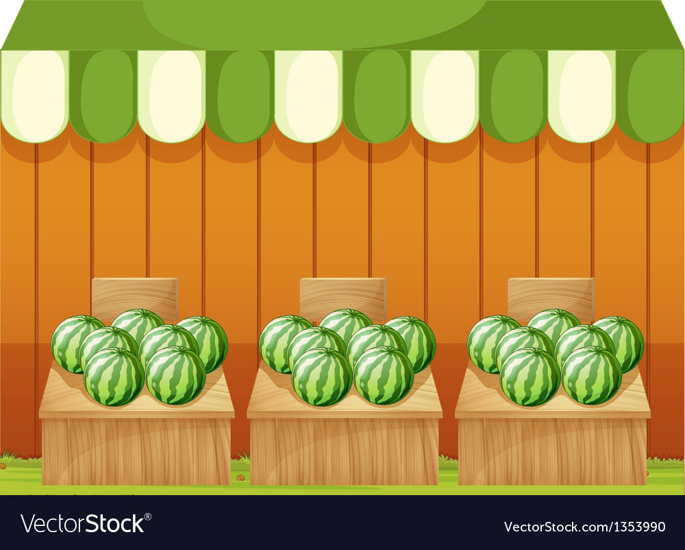 Watermelon fruit stands vector | Price: 1 Credit (USD $1)