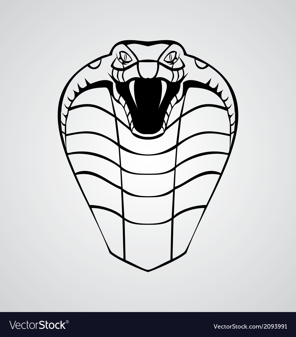 King cobra head vector | Price: 1 Credit (USD $1)