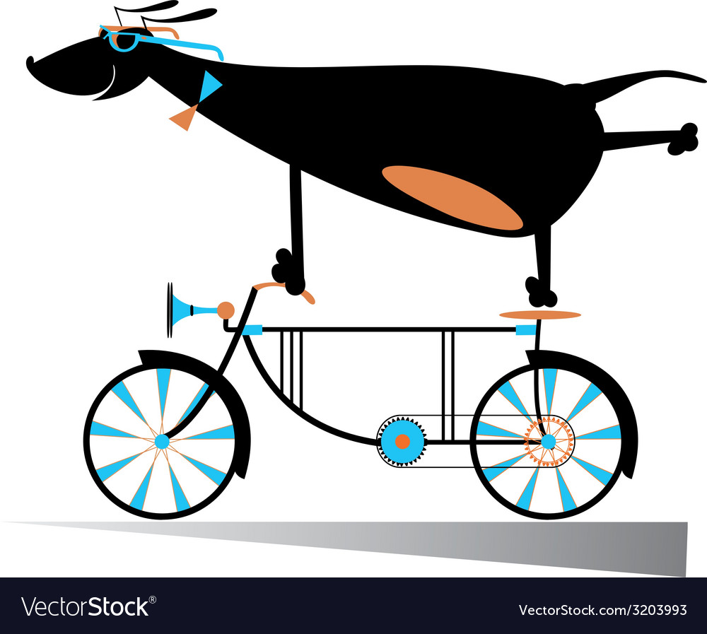 On the bike vector | Price: 1 Credit (USD $1)