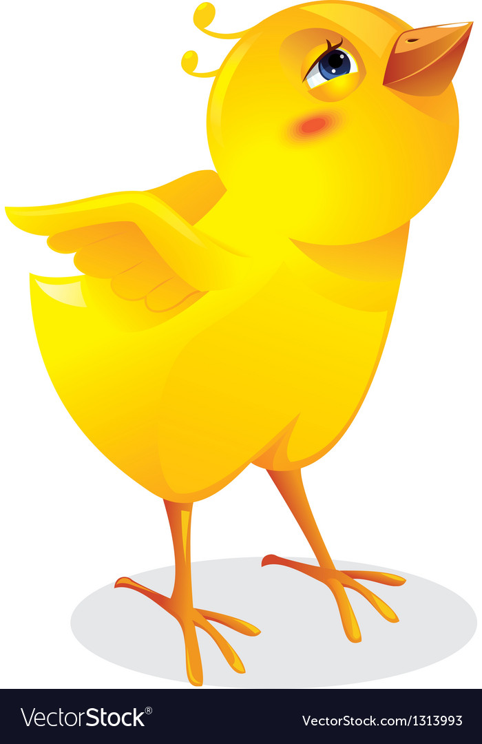 Surprised chicken vector | Price: 1 Credit (USD $1)