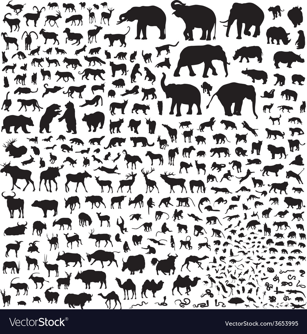 Silhouettes of wildlife asia vector | Price: 1 Credit (USD $1)