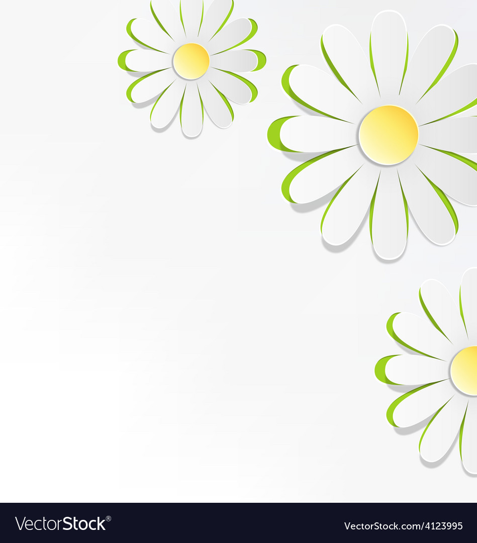 Three cutout chamomiles on grayscale floral spring vector | Price: 1 Credit (USD $1)