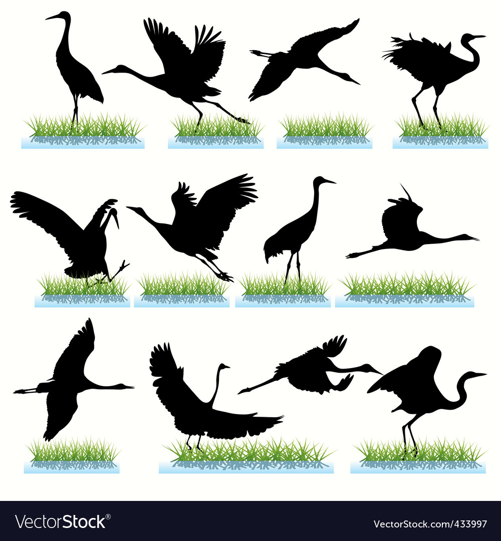 Cranes vector | Price: 1 Credit (USD $1)