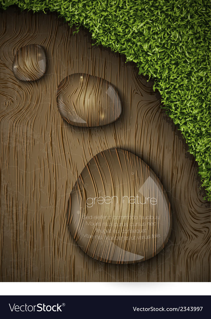 Dew drops on a wooden background vector | Price: 1 Credit (USD $1)
